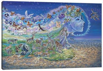 Trail Of Restoration Canvas Art Print