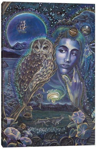 Whisper Of The Night Canvas Art Print