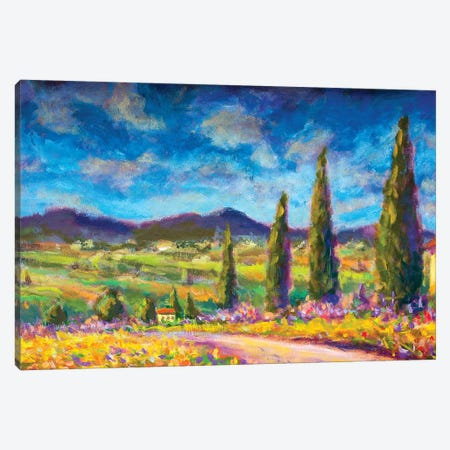 Summer Tuscany Landscape Canvas Print #VRY100} by Valery Rybakow Canvas Print