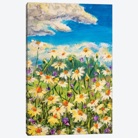 Summer White Daisies Canvas Print #VRY101} by Valery Rybakow Art Print