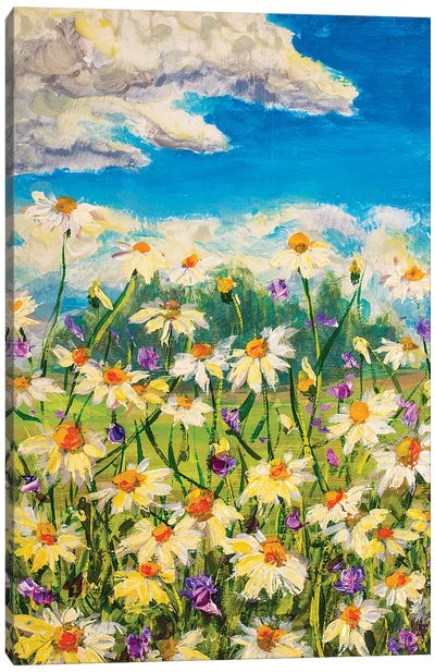 Summer White Daisies Canvas Art Print
