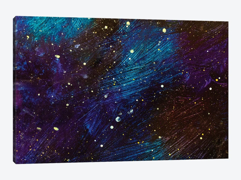 Beautiful Cosmos 1-piece Canvas Wall Art