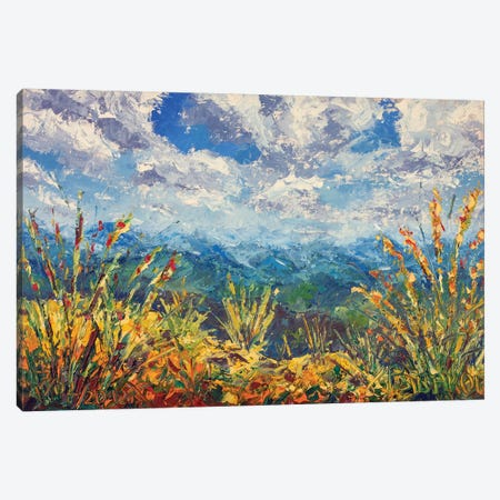 Beautiful Mountain View Canvas Print #VRY144} by Valery Rybakow Canvas Art