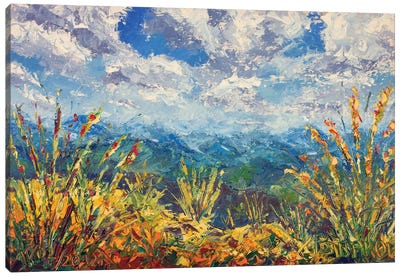 Beautiful Mountain View Canvas Art Print