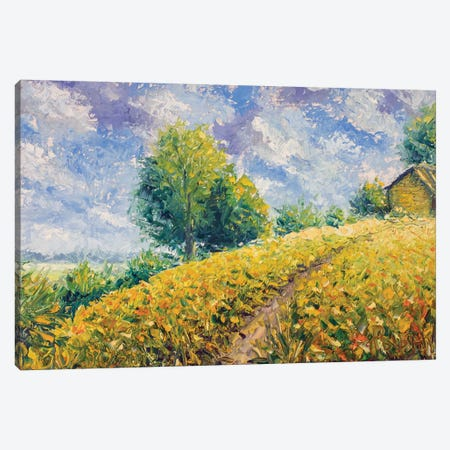 Country Landscape With A Beautiful Sky Canvas Print #VRY145} by Valery Rybakow Canvas Wall Art
