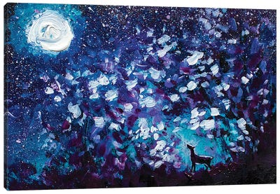 Black Wolf In Night Forest Canvas Art Print