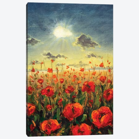 Field Of Red Poppies Canvas Print #VRY172} by Valery Rybakow Canvas Wall Art