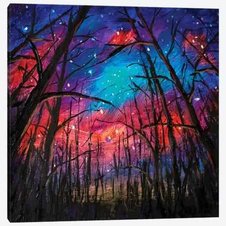 Beautiful Starry Sky Through Trees In Forest Canvas Print #VRY175} by Valery Rybakow Canvas Art Print