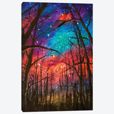 Night Landscape Canvas Print #VRY176} by Valery Rybakow Canvas Art Print