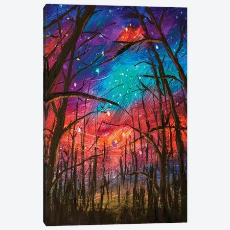 Night Landscape Canvas Print #VRY176} by Valery Rybakow Canvas Art Print