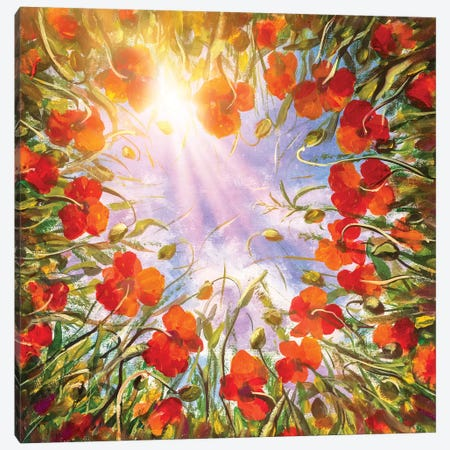 Field Of Red Poppies In Sun Canvas Print #VRY186} by Valery Rybakow Canvas Wall Art