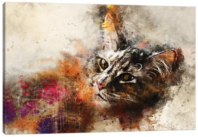 Abstract Cat Portrait Canvas Art Print