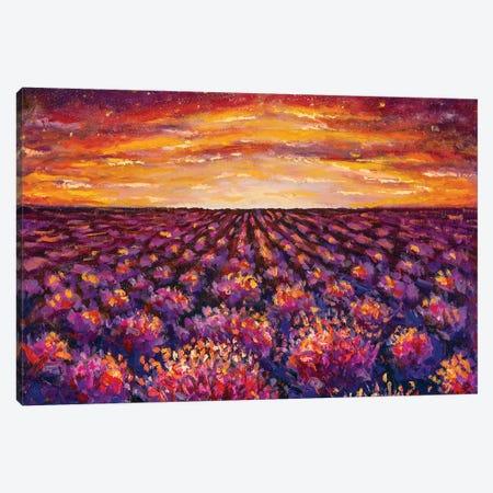 Sunset Over Lavender Field Canvas Print #VRY204} by Valery Rybakow Canvas Print
