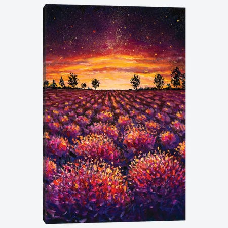 Lavender Field, Warm Dawn Canvas Print #VRY211} by Valery Rybakow Canvas Print