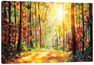 Vivid Morning In Colorful Forest Canvas Art Print