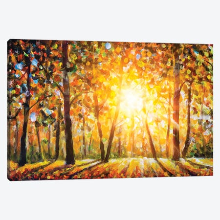 Autumn Forest Landscape With Sun Rays And Colorful Autumn Leaves Canvas Print #VRY237} by Valery Rybakow Canvas Art