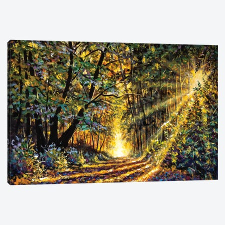 Original Oil Acrylic Painting Sunny Forest In Autumn Canvas Print #VRY247} by Valery Rybakow Canvas Print
