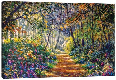 Sunny Footpath Road In Forest Park Canvas Art Print