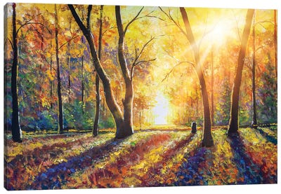 Sunny Autumn Dark Trees In Gold Autumn Forest Park Wood Alley Impressionism Art Canvas Art Print