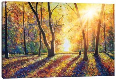 Sunny Autumn Dark Trees In Gold Autumn Forest Park Wood Alley Impressionism Art Canvas Art Print