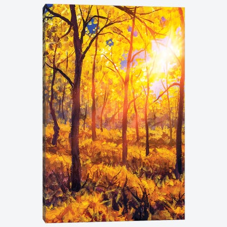 Sunset In Autumn Forest Landscape Canvas Print #VRY281} by Valery Rybakow Canvas Art