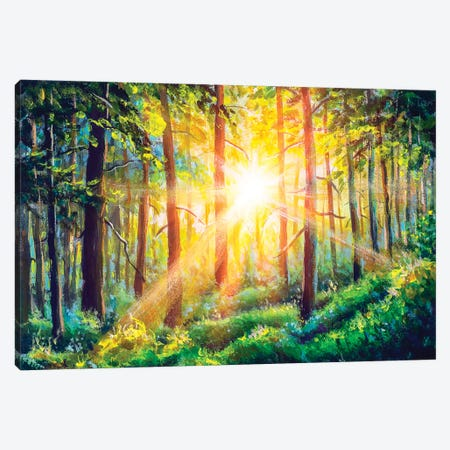 Beautiful Sunny Forest Landscape. Canvas Print #VRY283} by Valery Rybakow Canvas Artwork