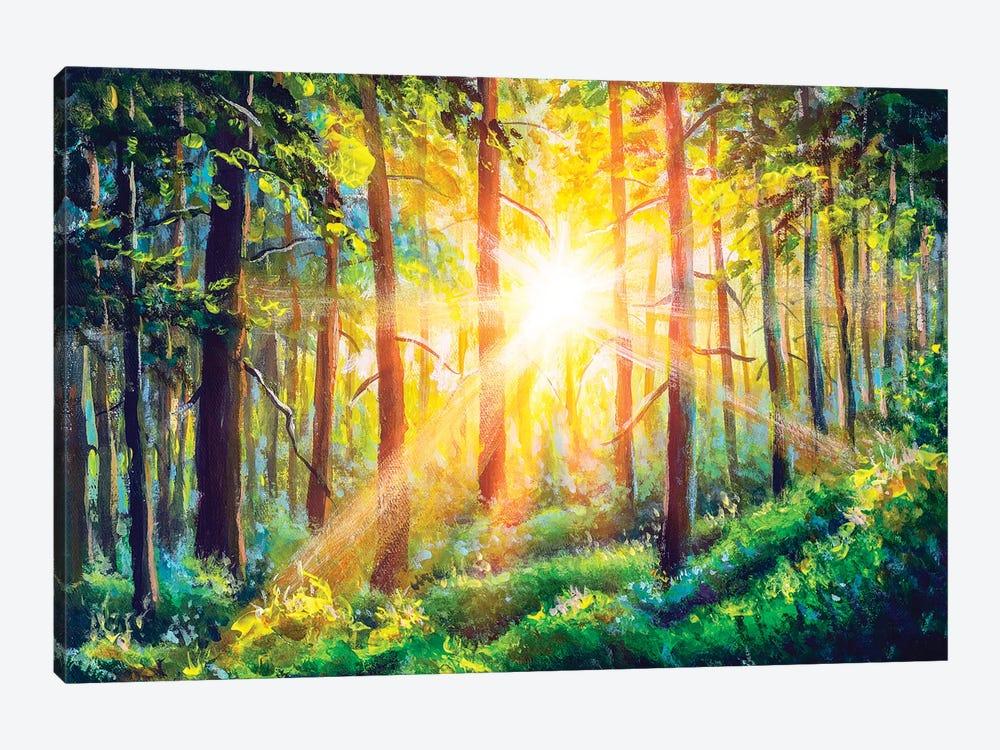 Beautiful Sunny Forest Landscape. by Valery Rybakow 1-piece Canvas Wall Art