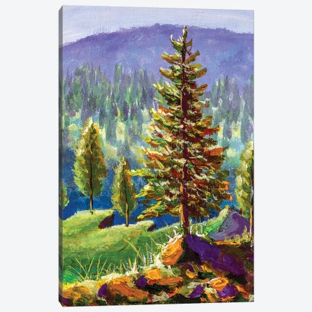 Big Pine On Background Of Sunny Forest And Mountains Canvas Print #VRY284} by Valery Rybakow Canvas Print