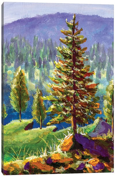 Big Pine On Background Of Sunny Forest And Mountains Canvas Art Print