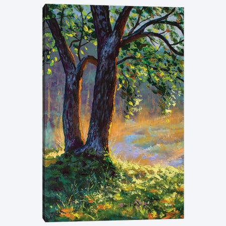 Big Trees On Sun Russian Morning On River Canvas Print #VRY315} by Valery Rybakow Canvas Print