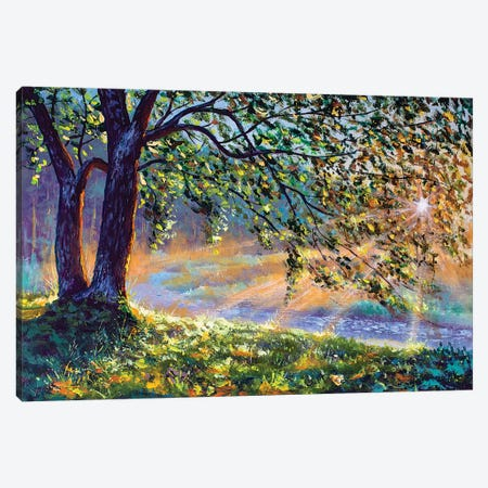 First Sun Rays In River. Big Trees And Warm Sunny Grass Canvas Print #VRY316} by Valery Rybakow Canvas Art Print