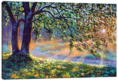 First Sun Rays In River. Big Trees And Warm Sunny Grass Canvas Art Print