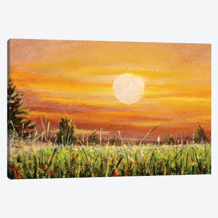 Beautiful Warm Sunset Dawn Over Green Field Canvas Print #VRY348} by Valery Rybakow Canvas Print
