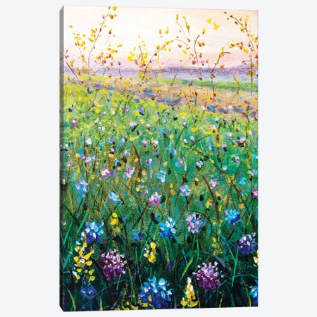 Beautiful Flower Wildflowers Landscape Art Canvas Print #VRY357} by Valery Rybakow Canvas Art Print