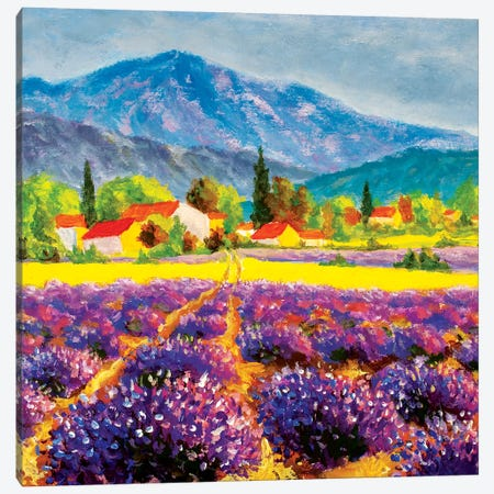 Rural Landscape In Summer Day In Provence, France Canvas Print #VRY360} by Valery Rybakow Art Print