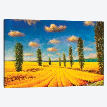 Farm Field Against Background Of Tall Cypress Trees Canvas Print #VRY369} by Valery Rybakow Canvas Print