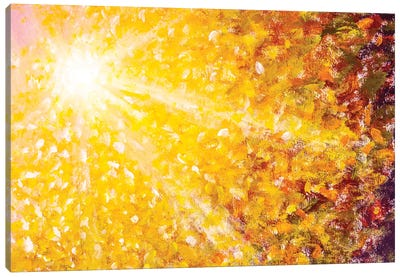 Beautiful Sun Rays Sunshine In Orange Gold Autumn Canvas Art Print