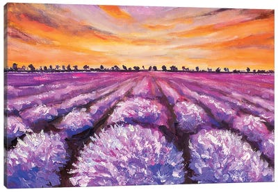 French Lavender Field Canvas Art Print