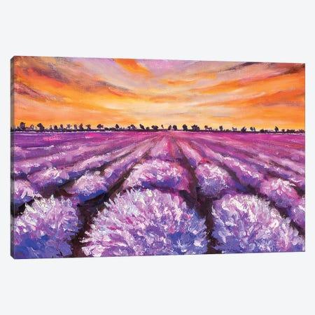 French Lavender Field Canvas Print #VRY38} by Valery Rybakow Art Print