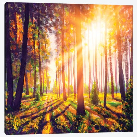 Spring Forest Trees. Nature Green Wood Sunlight Background Canvas Print #VRY391} by Valery Rybakow Canvas Art