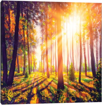 Spring Forest Trees. Nature Green Wood Sunlight Background Canvas Art Print
