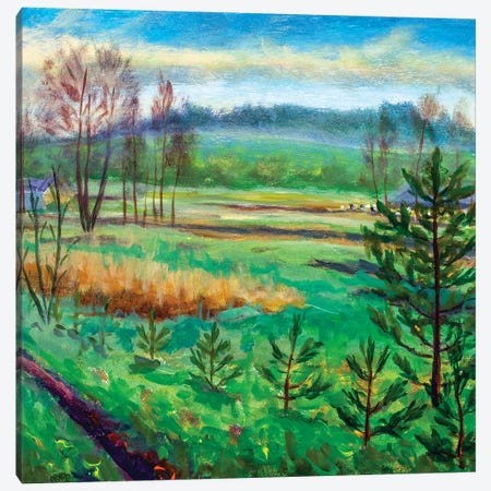Green meadows fields foggy forest hill Canvas Print #VRY394} by Valery Rybakow Canvas Print