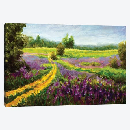 Purple Flowers Field Canvas Print #VRY395} by Valery Rybakow Canvas Art Print