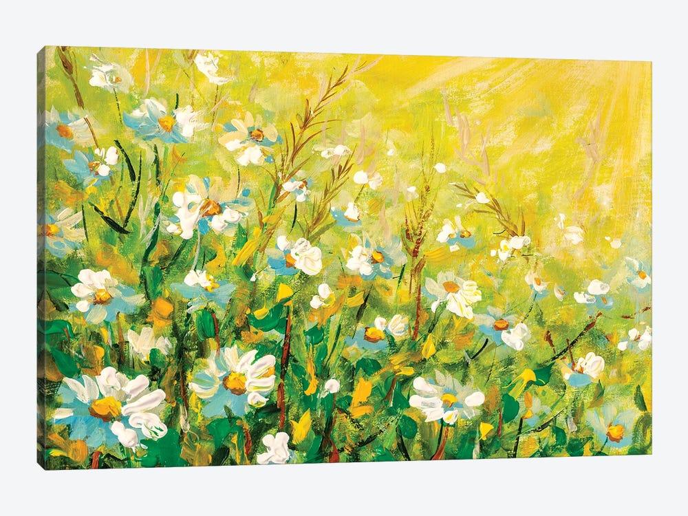 Daisy flowers field wide background in sunlight. by Valery Rybakow 1-piece Canvas Artwork