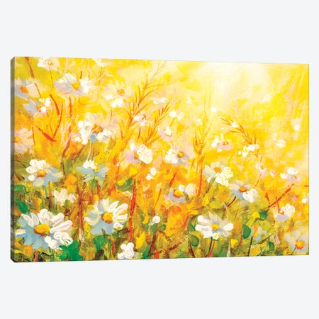Meadow in spring and summer under the sun. Canvas Print #VRY410} by Valery Rybakow Art Print