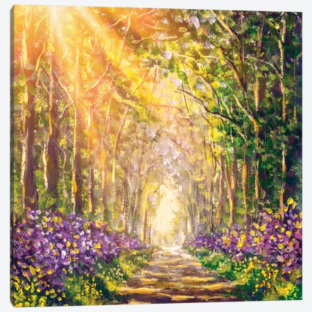 Spring Sunny Summer Forest Canvas Print #VRY424} by Valery Rybakow Canvas Print