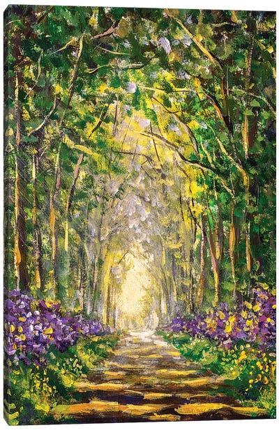 Sunny Footpath Road In Sunlight Park Canvas Art Print