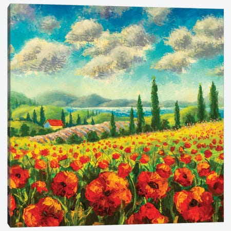 Summer Sunny Positive Landscape Fine Art Canvas Print #VRY431} by Valery Rybakow Canvas Print