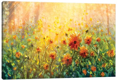 Flower Field In Forest Under The Morning Sunlight Canvas Art Print