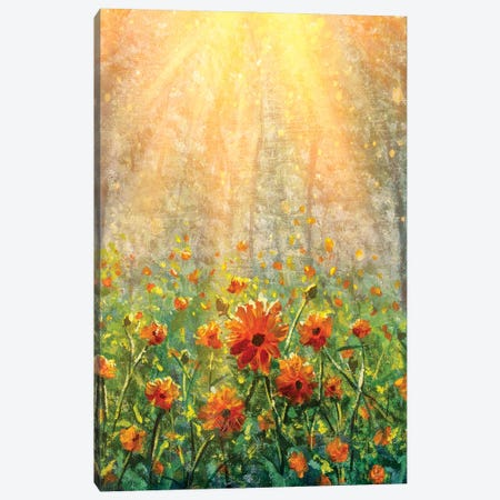 Vertical Cosmos Flowers Under Sunlight In The Field In Forest - Beautiful Flowers Canvas Print #VRY436} by Valery Rybakow Canvas Artwork